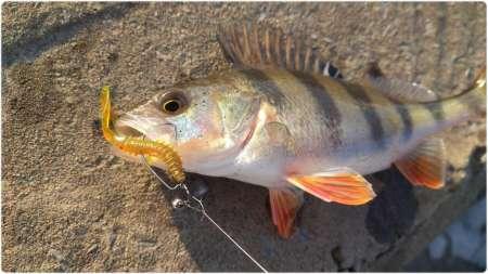 Удобные застёжки для микроджига HitFish Long Snap