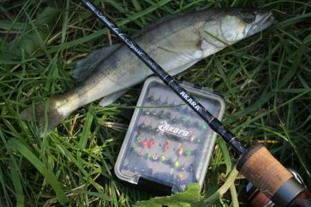 Мормышинг для начинающих летом. Как ловить?