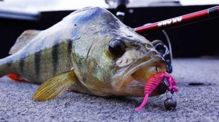Рыбалка на большой реке