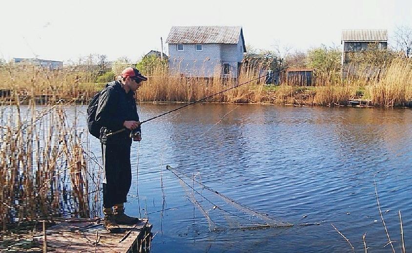 прогноз клева рыбы в кировоградском районе