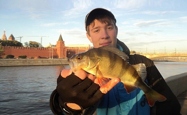 Рыбалка форум москва река