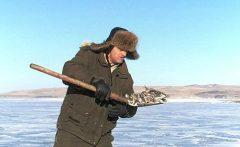 прогноз клева рыбы лабинск