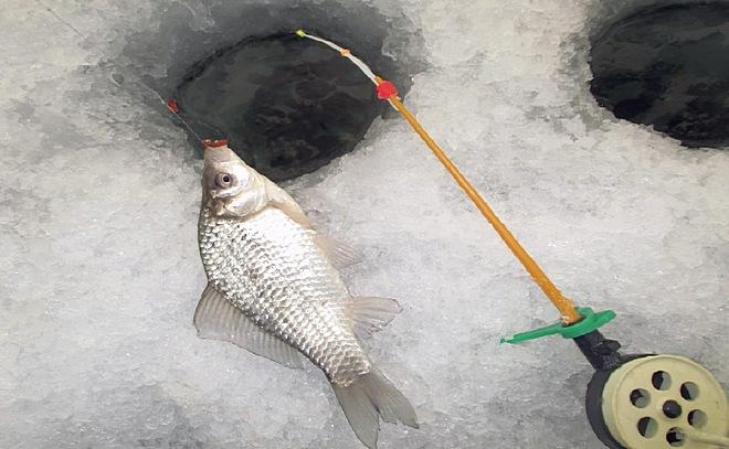 Зимняя рыбалка в калач на дону