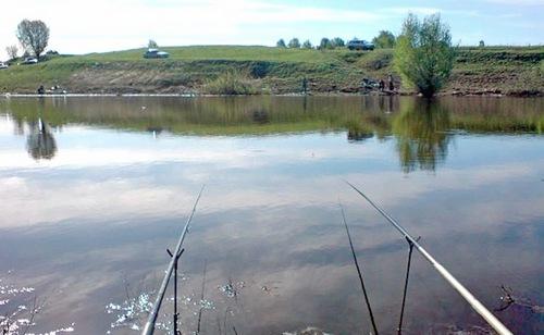 прогноз клева рыбы в бежецке тверской области