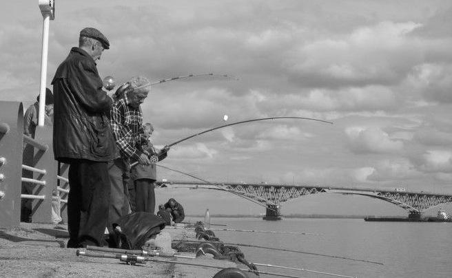 рыбалка саратовский мост