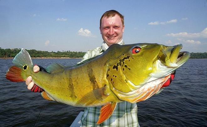 Рыбалка на Амазонке