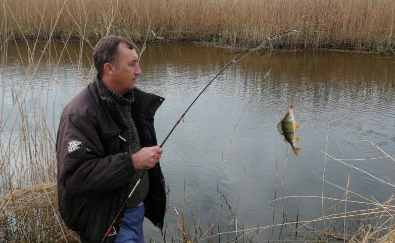 жара и комары на рыбалке